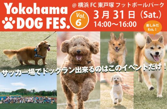 横浜ドッグフェス6開催